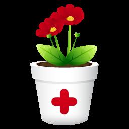 plant no shadwo icon