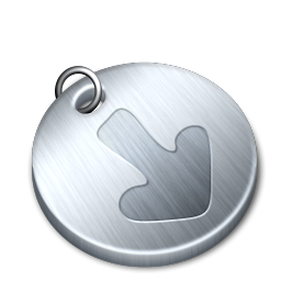 shiny downloads icon